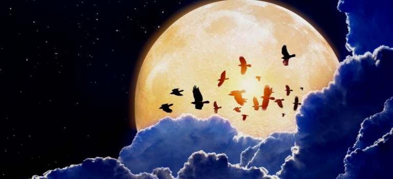 A Szuperújhold október 16-án felkészít minket azokra a változásokra, amelyektől annyira félt a lelkünk!